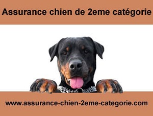 assurance chien categorie 2 attestation civile 2eme cat gories. Black Bedroom Furniture Sets. Home Design Ideas