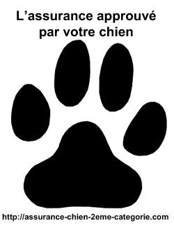 Assurance pour chien catégorie 2 propriétaire